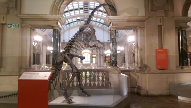 Plateosaurus Bristol